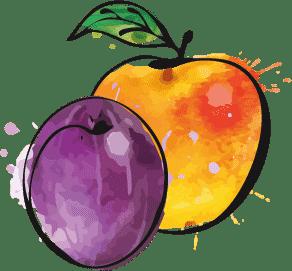 Pflaume und Orange