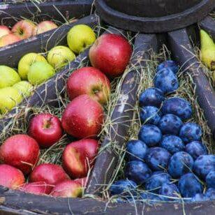 Diverses Obst in rustikaler Auslage